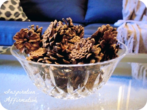 pinecones in bowl, close