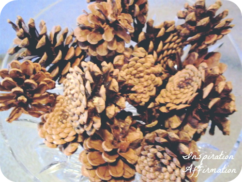 pinecones in bowl, very close